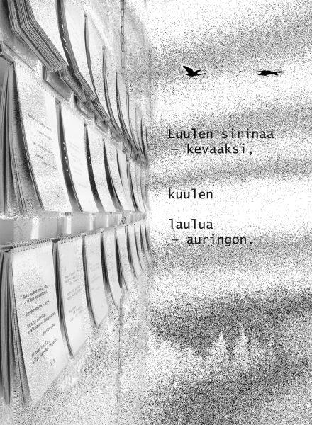outi_latvala_kirjak_0516_kuva